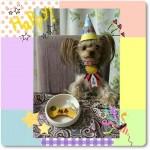 柚寿ちゃん      2歳のお誕生日おめでとう